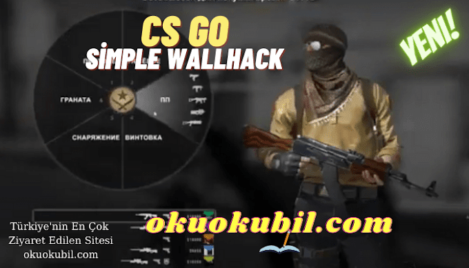 CSGO Simple Wallhack Aimbot, ESP, Speed, Free Undetected 2021
