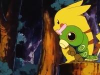 Capitulo 3 Temporada 1: Ash captura a un Pokémon