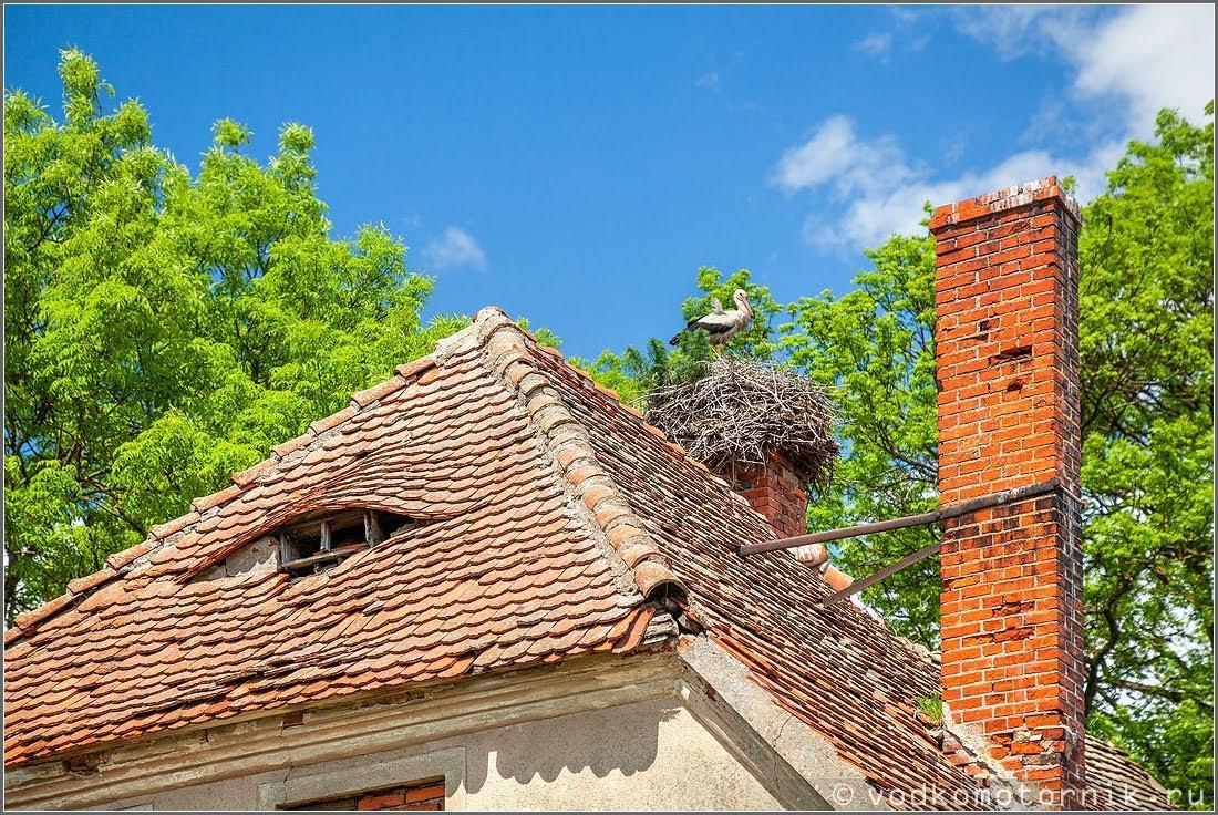 На крыше замка Норкиттен