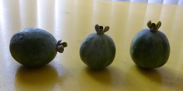 pineapple guavas close up