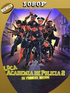 Loca Academia de Policia 2: Su primera mision (1985) HD [1080p REMUX] Latino [GoogleDrive] SilvestreHD