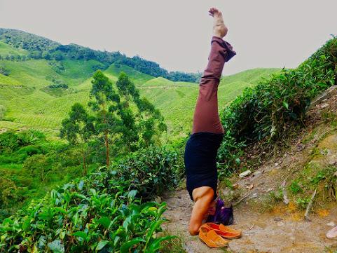 ŚĪRṢĀSANA – HEADSTAND Yoga