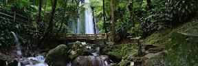 Destinasi Wisata di Solo yang Lagi Hits ExploreBandung; 10 Destinasi Wisata di Solo yang Lagi Hits Cocok Untuk Liburan