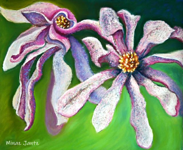 Magnolia Magnificent by Minaz Jantz (Pastel)