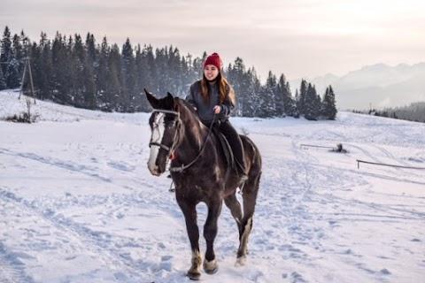 Jazda konna po śniegu w Zakopanym