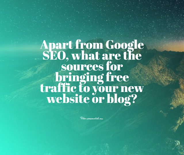 Apart from Google SEO, what are the sources for bringing free traffic to your new website or blog?