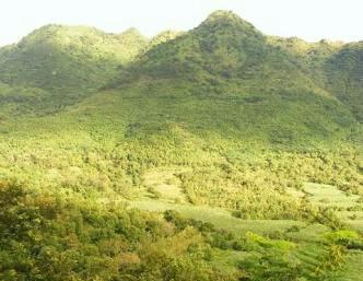 Pengrajin Dari Pelepah Pohon Pisang Asal Kabupaten Nganjuk