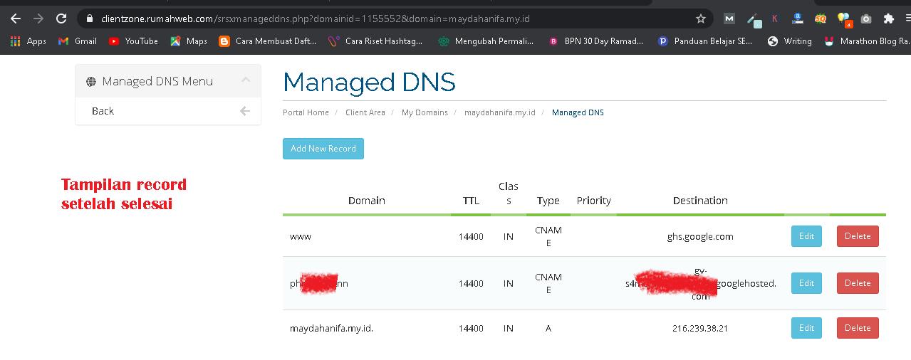 record dns custom domain