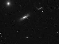 HCG 44 - Galaxy Cluster