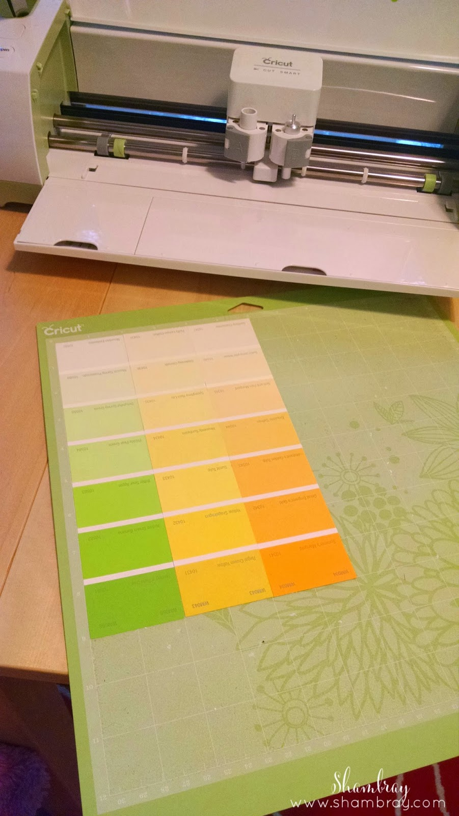 cutting mat, Cricut, paint swatches