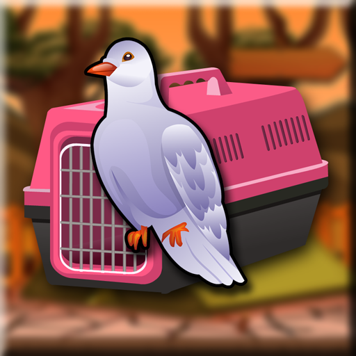 Games2Jolly - Ringneck Dove Escape