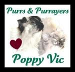Prayers for Poppy Vic