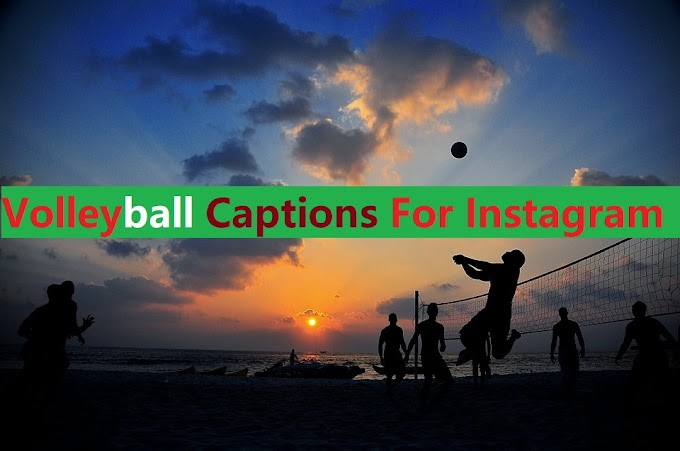 57+ Volleyball Captions For Instagram or Puns