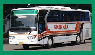 Cari Agen Bus Gunung Mulia