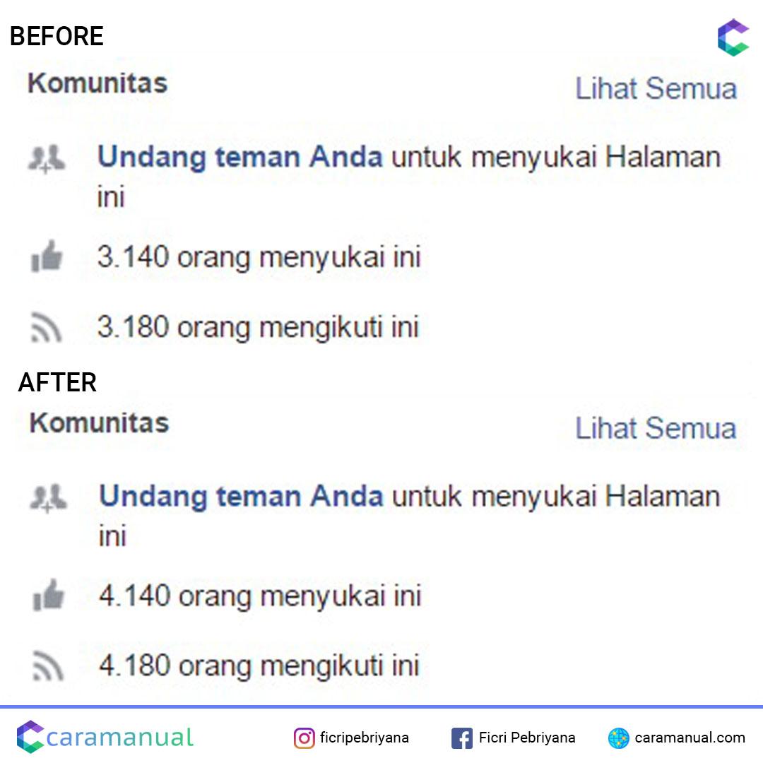 jasa tambah like fanpage facebook 3