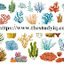 सजीवों का वर्गीकरण (Classification of Living Organism) |