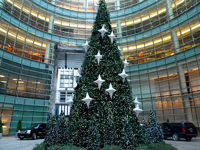 Big Green Christmas Tree New York City Public Domain Photo Image