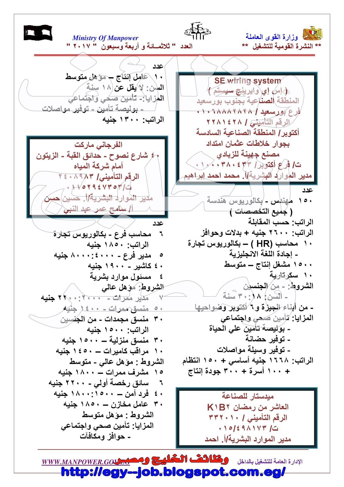 940ed6a27 وظائف لكل اللمهن اكثر من 4000 وظيفة لكبرى الشركات برعاية وزارة القوى ...
