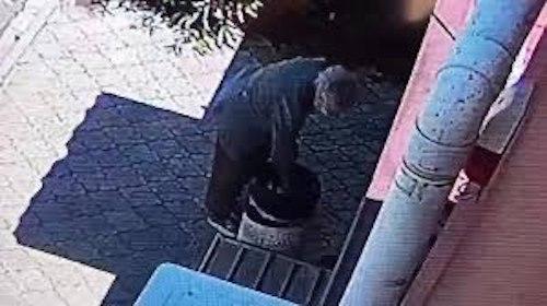 Пенсионерка избавилась от маленького беззащитного котенка, выбросив его в урну