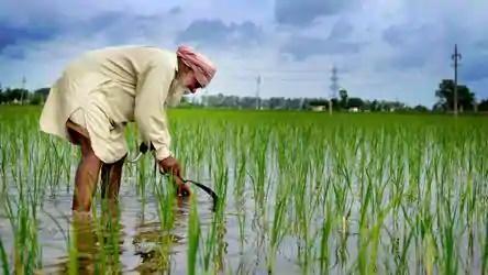 Farmers Protest: आखिर किसान क्यों कर रहे हैं आंदोलन, क्या है उनकी मांग?