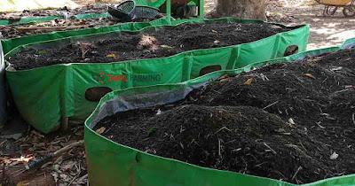 vermicomposting, earthworm composting, silpaulin vermi bed compost, organic composting @organicfarming
