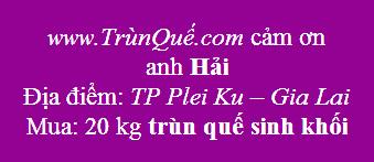 Trùn quế Pleiku - Gia Lai