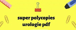 super polycopies urologie 2020.pdf