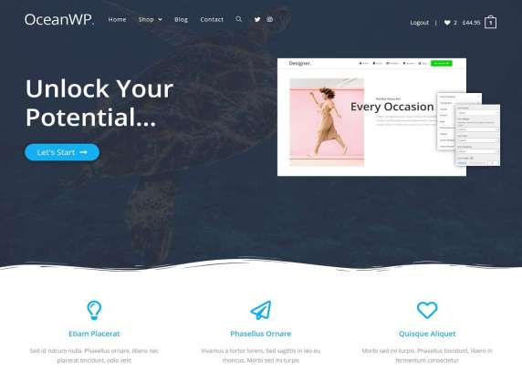 WordPress Tema-OceanWP