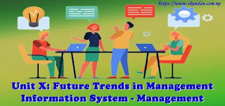Future Trends in Management Information System - Management Information System