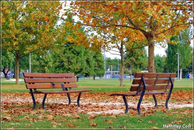 những chiếc ghế nơi công viên mùa thu