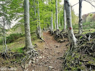 trekking valle orsigna