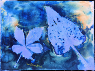 Wet cyanotype_Sue Reno_Image 412