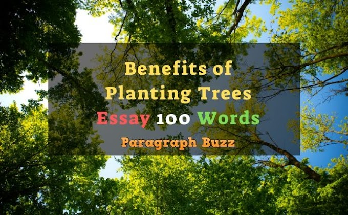 Essay on Benefits of Planting Trees in 100 Words for Students