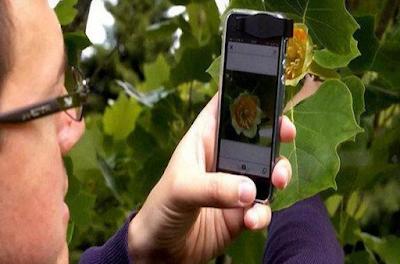 Αυτή είναι η έξυπνη εφαρμογή προσδιορίζει αμέσως λουλούδια και φυτά (vid)