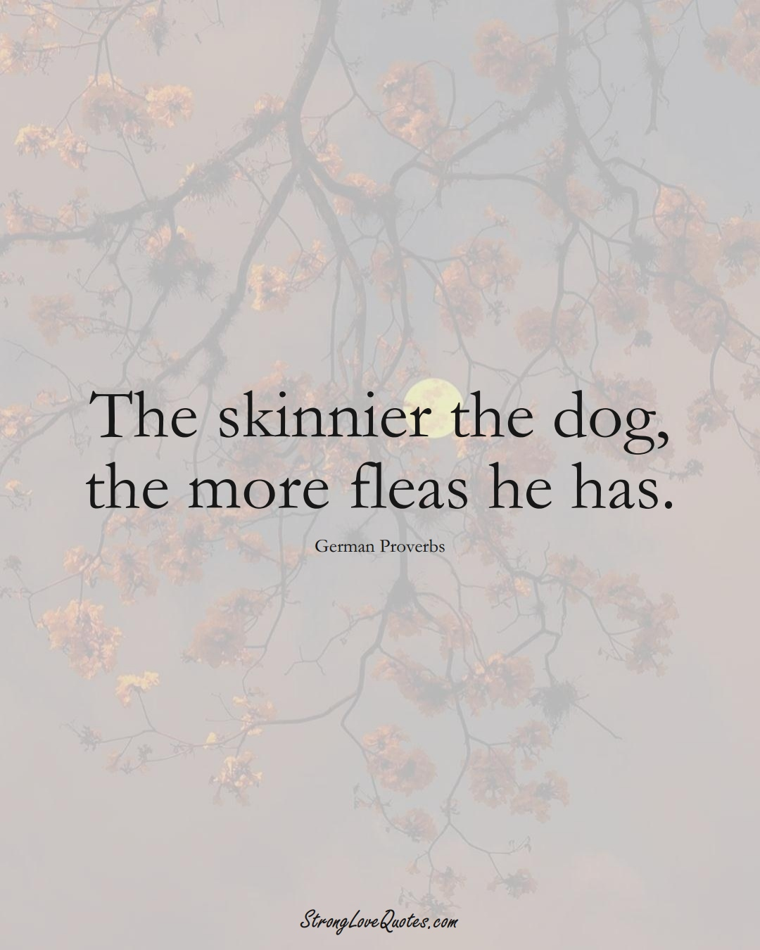 The skinnier the dog, the more fleas he has. (German Sayings);  #EuropeanSayings