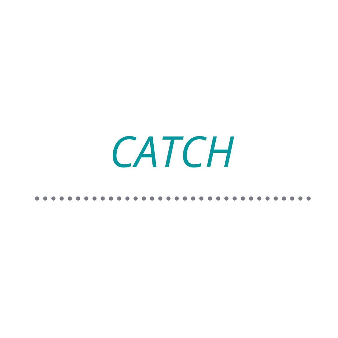 """Beberapa arti kata """"Catch"""" - Klinik Inggris"""