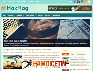 MaxMag Blogger Teması