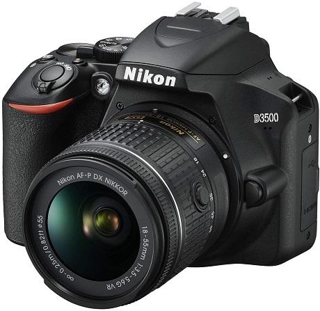 ¿Cuál-es-el-mejor-tipo-de-cámara-para-principiantes?