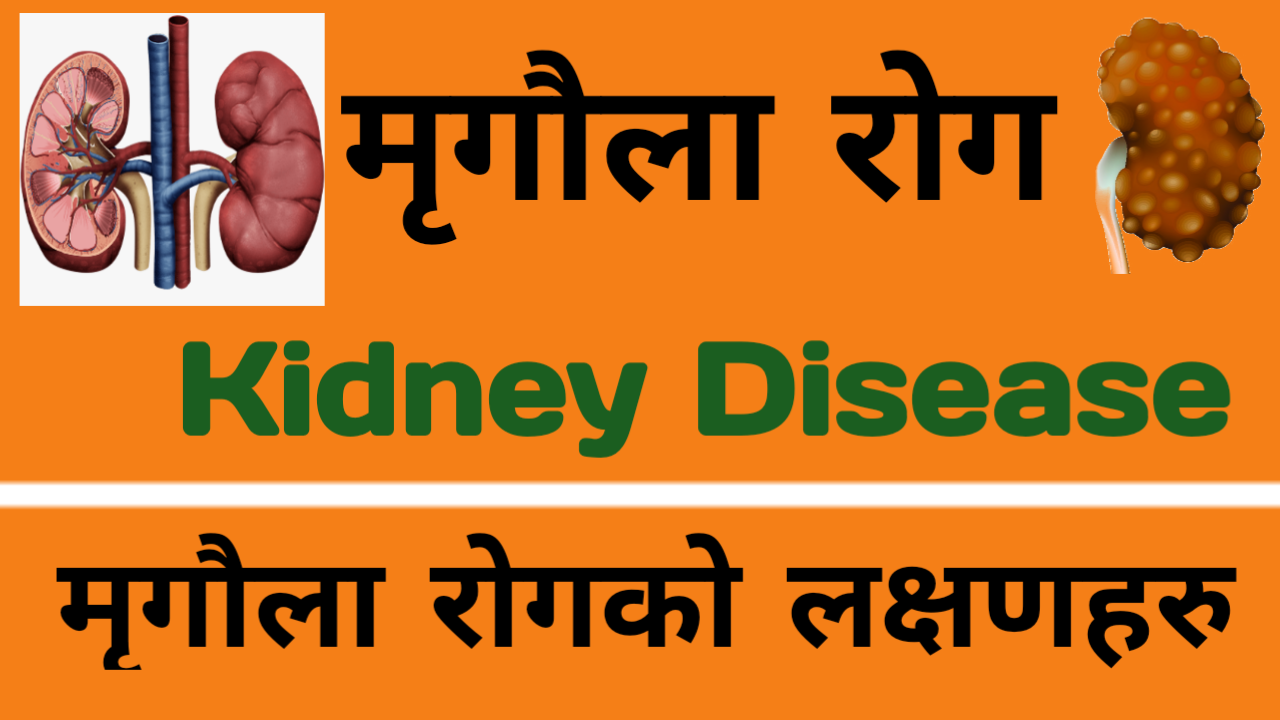 Kidney Disease Symptoms and Causes in Nepali