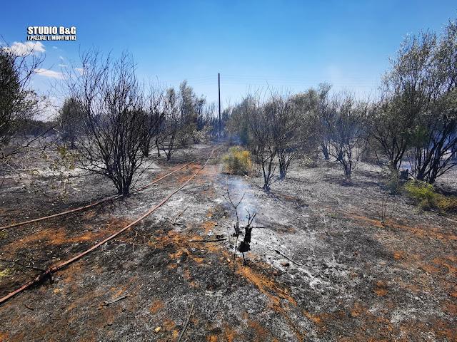 Υπό έλεγχο η φωτιά στην Άγια Τριάδα Ναυπλίου