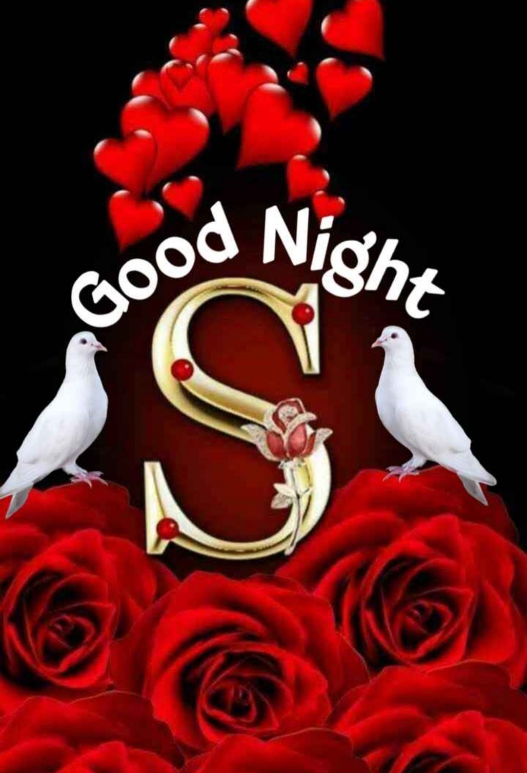 550 Best Good Night Image Good Night Image For Love Good Night Image For Lover Good Night Image Download Good Night Image Hd Wishing Photo