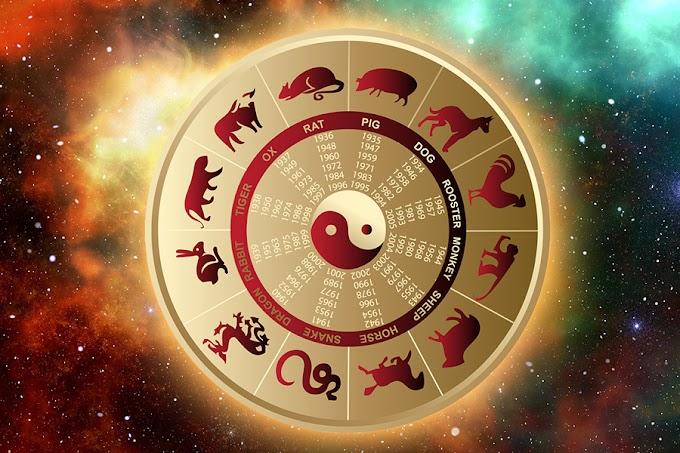 Восточный гороскоп в идиомах и пословицах — коротко и ясно о том, чего вам ждать в августе