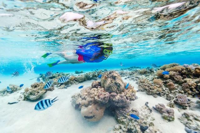 Ulasan Berlibur Di Pulau Seribu