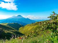 4 Rekomendasi Gunung yang Cocok untuk Pemula. Yuk, Mendaki!