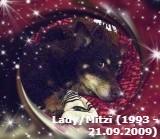 Lady Mitzi