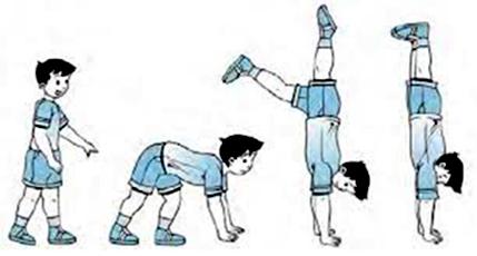 36++ Gerakan handstand adalah ideas