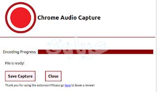 تصوير لقطة الشاشة من خلال اضافة Chrome Audio Capture