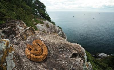 Ilha das Cobras