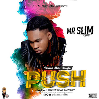 Mr. Slim - Push