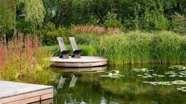 Tipos y ejemplos de piscinas naturales (biológicas o ecológicas) en el jardín